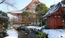 Top 5 Luxury Hotels in Tokyo